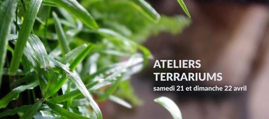 Ateliers Terrariums avec Mathilde Lelièvre