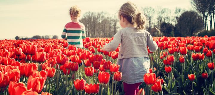 Sélection spéciale printemps : cinq livres pour les enfants