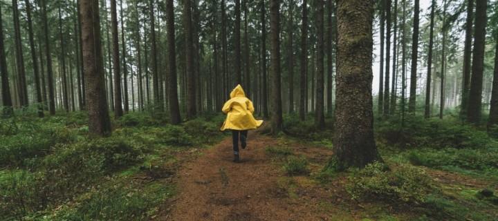 10 thrillers qui vont vous faire oublier que vous êtes coincé chez vous