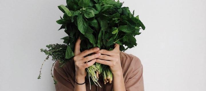 Prêts pour une révolution verte dans vos assiettes ?