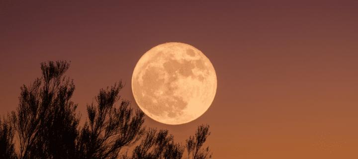 Renouez avec la sagesse ancestrale de la Lune