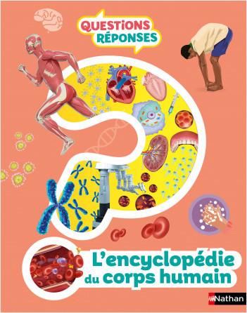 L'Encyclopédie du corps humain - Questions/réponses - Dès 7 ans