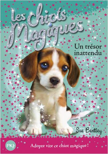 Les chiots magiques - tome 14 : Un trésor innatendu