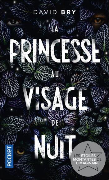 La Princesse au visage de nuit