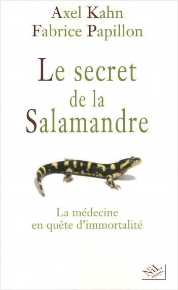 Le secret de la salamandre