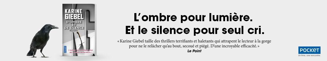 Bannière - Pocket - D'ombre et de silence - Giebel