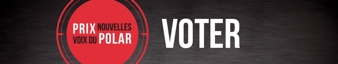 Bannière VOTER NVP 2020 mini-site
