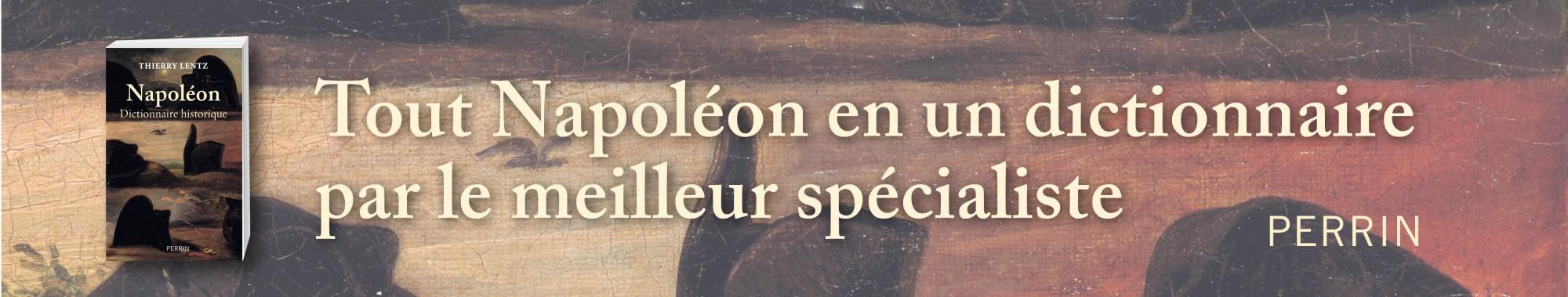 Napoleon dictionnaire historique -Perrin