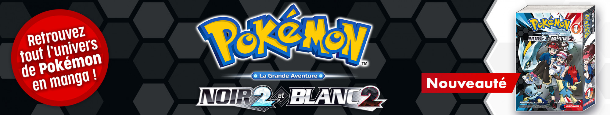 Bannière - KUROKAWA - Pokémon Noir 2 et Blanc 2 - T1